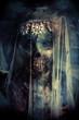 horror under the veil