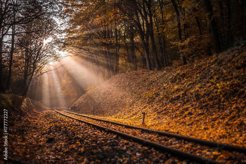 Keuken foto achterwand Spoorlijn Budapest, Hungary - Rising sun falls on the railroad track leading through the autumn forest at Huvosvolgy