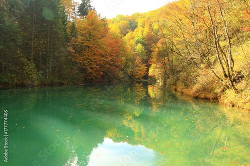 Foto auf Gartenposter Fluss Fall on the river