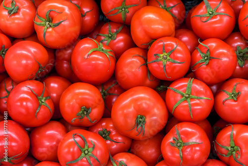 Fototapeta Delicious red tomatoes in Summer tray market agriculture farm full of organic