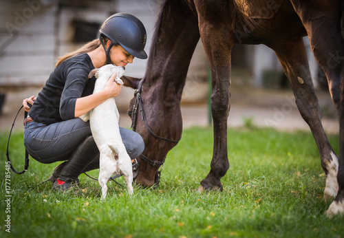 Young girl preparing horse for ride and petting jack russel terrier puppy