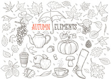 Autumn Elements Hand Drawn Illustration (vector)