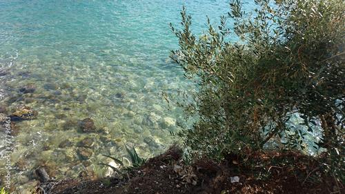 Plakat niesamowita naturalna plaża w chorwackim mieście dubrovnik