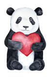 Cute little panda teddy bear holding a big red heart. Romantic holiday, wedding, love confession, Saint Valentine's Day, joy symbols illustration and decor, hand drawn, isolated on white background. - 177800644