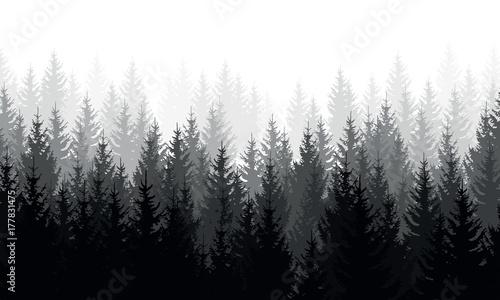 szare-drzewa-we-mgle