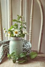 Closeup Of  Wild Flowers In Ja...