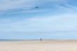 Boy flying dragon kite on the beach