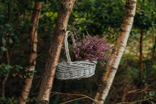Heather Basket In The Woods