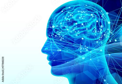 Fotografiet  脳と伝達イメージ