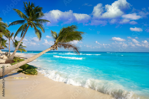 Photo sur Toile Caraibes Playa del Carmen beach palm trees Mexico