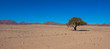 Landschaft in Namiba, Textfeld