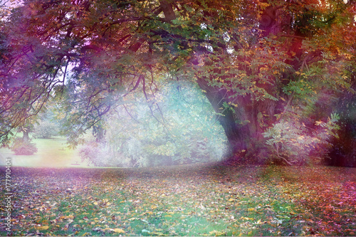 Beautiful Mindfulness Tree Landscape - Big multicolored tree with large draping branch in an ethereal light landscape with feminine colors and copy space