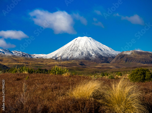 Fototapeta Śnieg zakrywał wulkan z trawiastą łąką na słonecznym dniu
