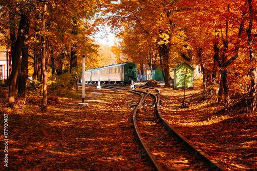 Fototapeta Pociąg na jesień lesie