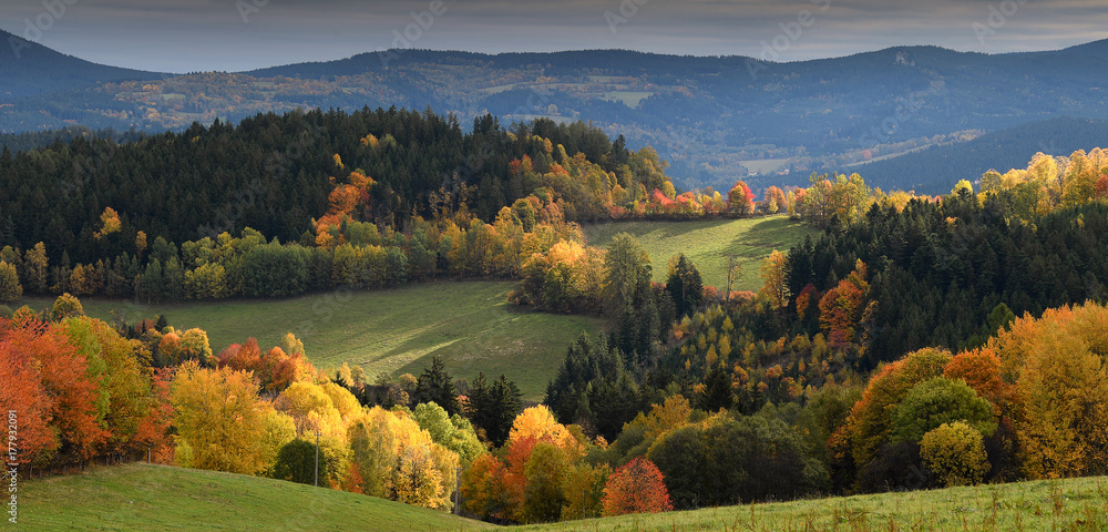Fototapety, obrazy: Touch of soft light on gentle rolling hills with trees in vivid autumn colours, Sumava, Böhmerwald, Kasperske Hory