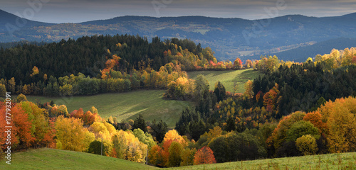 Touch of soft light on gentle rolling hills with trees in vivid autumn colours, Fototapeta