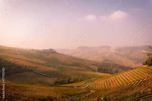 Foto op Canvas Lichtroze Langhe, Piedmont, Italy. Autumn landscape