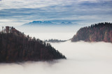 Forest in the  fog, mountains on the horizon. - 177937076
