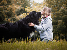Young Girl With Huge Dog Breed...