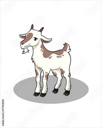 Little cute goat-vector drawing-isolated white background