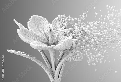 Obrazy szare  digital-flower-disintegrates-to-3d-pixels
