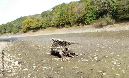 Zdjęcie XXL susza w jeziorze, krajobraz, ocieplenie, klimat