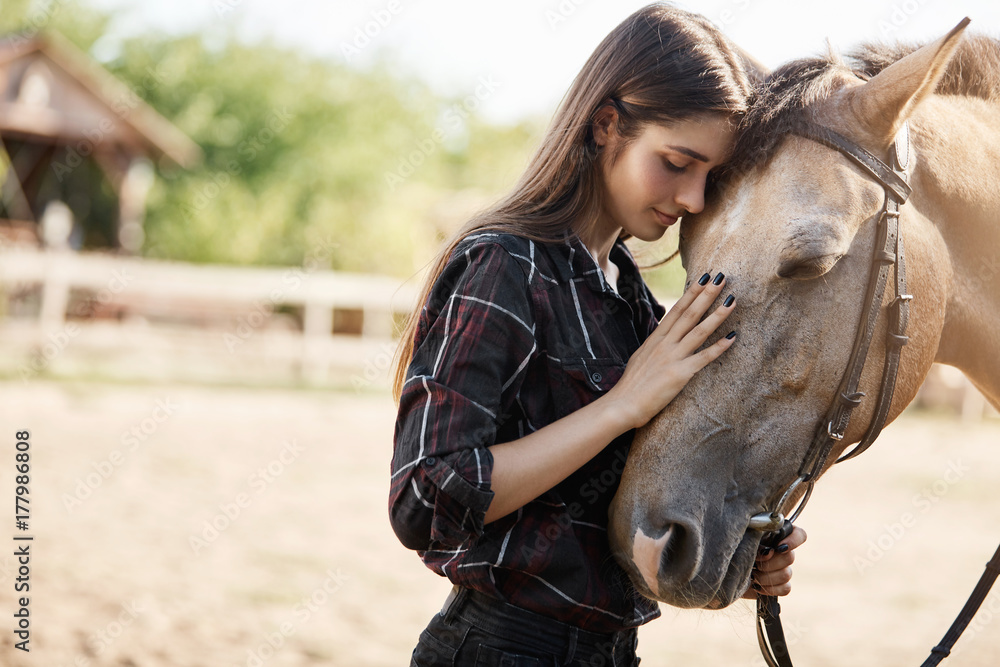 Fototapety, obrazy: Portait of young female broodmare petting a new horse on a ranch on a sunny summer day.