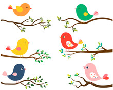 Cute And Colorful Vector Birds...