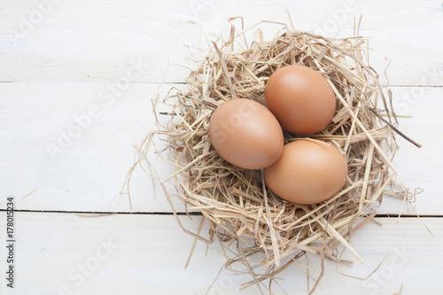 egg in nest on dark vintage wooden