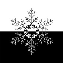 Illustration Of Black White Snowflake