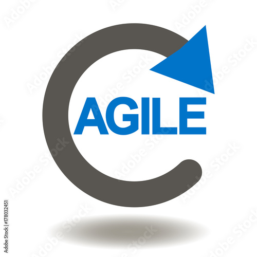 Agile Life Cycle Icon Vector. Agility Development ...