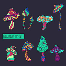 Set Of Stylized Mushrooms In Acid Colours