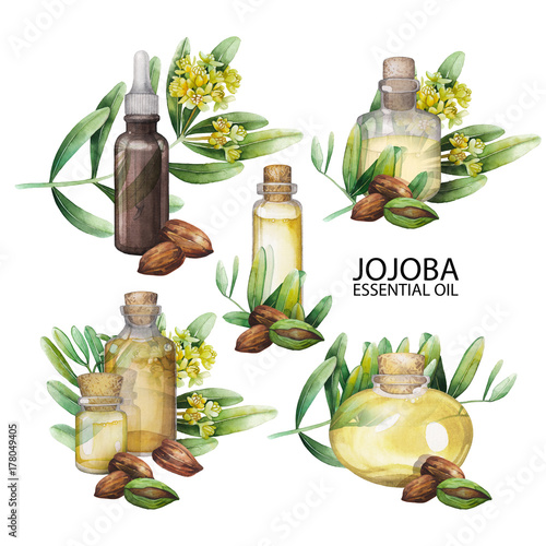 Watercolor jojoba oil set Canvas-taulu