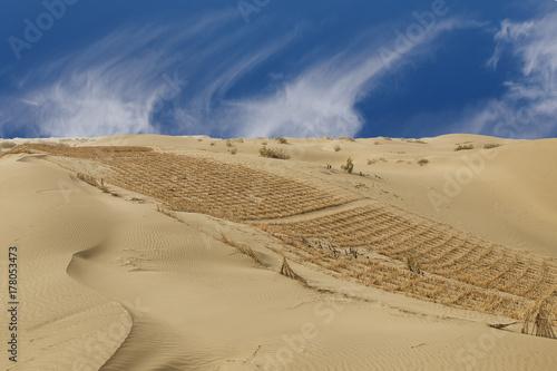 Plakat Taklamakan pustynia II, porcelana