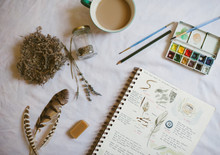 Nature Journal  And Supplies