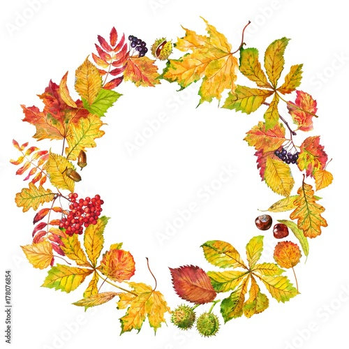 Photo sur Toile Empreintes Graphiques Wreath of autumn leaves and berry. Watercolor.