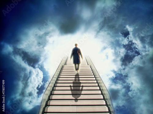 Carta da parati Way to heaven