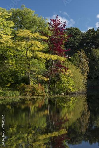 Photo The lake in Botanical Gardens, Copenhagen, Denmark