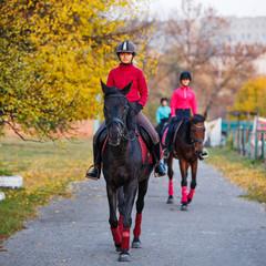 Grupa nastoletnich dziewczyn jedzie konie w jesień parku. Sport jeździecki tło z kopii przestrzenią