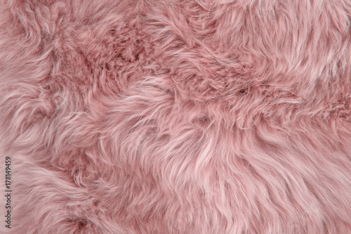 Photo sur Toile Les Textures Pink sheepskin rug background sheep fur Wool texture