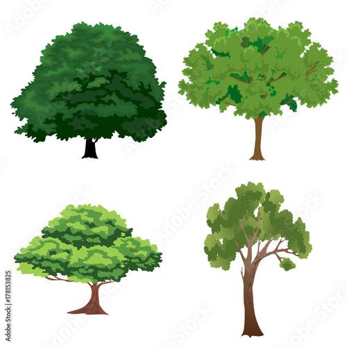 Photo Stands Kids tree set