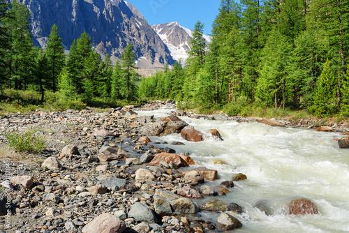 Plakat Widok doliny rzeki Aktru. Republika Ałtaju. Rosja
