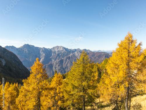 Deurstickers Herfst Autumn mountain landscape, Italy