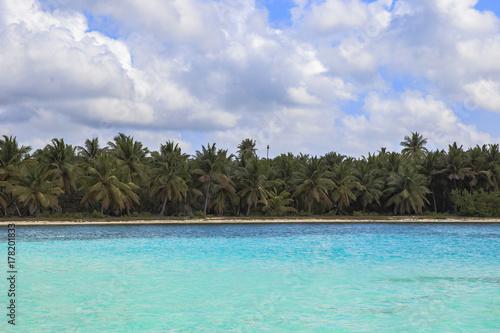 Beach Ocean Dominican Republic Island Sea Caribbean Sea