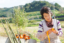 Elderly Woman Doing Agricultur...