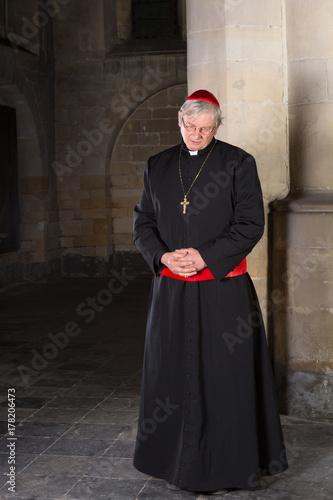 Leinwand Poster Pensive cardinal