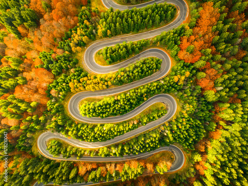Fotografia, Obraz  Aerial view of winding road through autumn colored forest