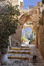 Medieval Street In Ancient Jaf...