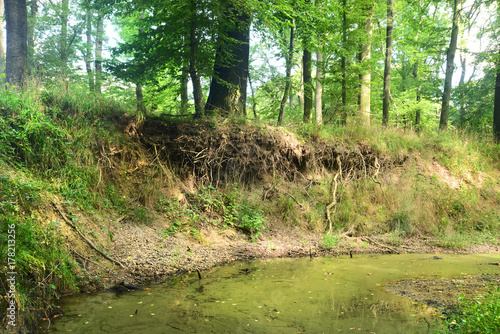 Vászonkép Landschaft 515