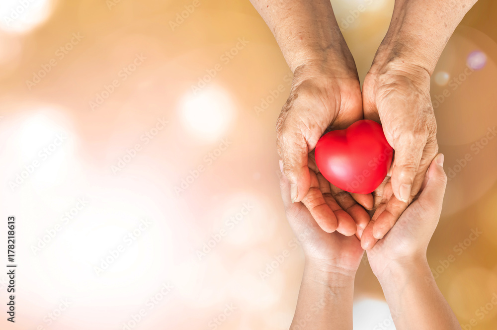 Fototapety, obrazy: Elderly senior person or grandparent's hands with red heart  in support of nursing family caregiver for national hospice palliative care and family caregivers month concept